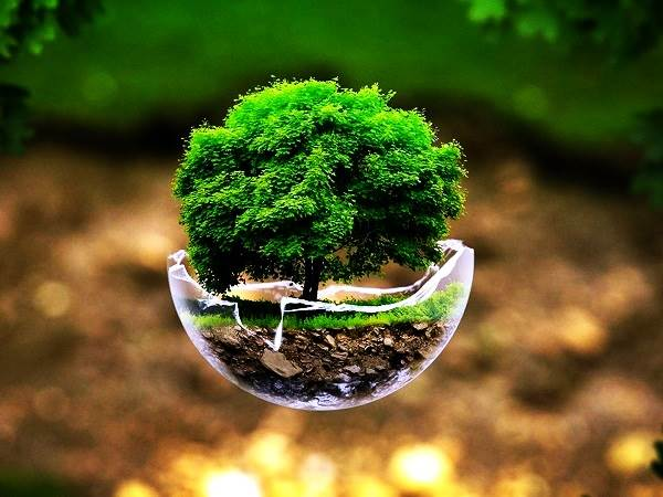 Happy Earth Day Images Photos 2015 Welovebuzz عربية