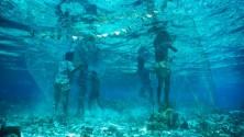 10 صورة توضح روعة وجمال المحيطات حول العالم