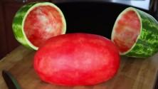 كيفية تقشير البطيخ الأحمر بطريقة احترافية
