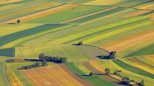 السجل الوطني الفلاحي وحماية الأراضي الزراعية