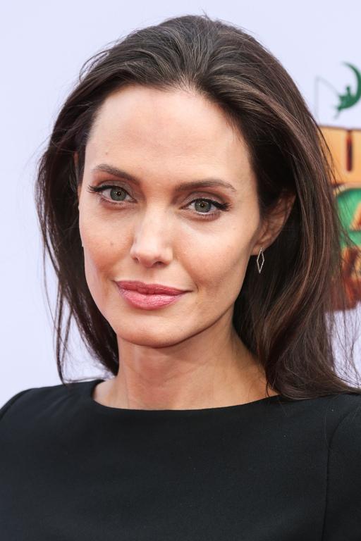Angelina-Jolie-a-l-avant-premiere-de-Kung-Fu-Panda-3-le-16-janvier-2016-a-Los-Angeles_exact1024x768_p (1)