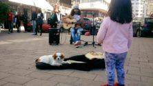الإبداع فالساحة ماشي جريمة: وقفة إحتجاجية تنديداََ بقرار منع فنون الشارع في الدار البيضاء