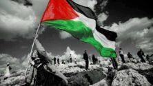 وجهة نظر: حتى لا ننسى فلسطين #إضراب_الكرامة