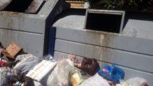 انتبه .. الكثير من الفوائد تجنيها برميك للأزبال بجانب حاويات القمامة وليس بداخلها